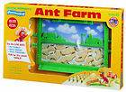 LIVE ANT FARM HABITAT Science Learning Tool Kid Hobby Ants Great Gift