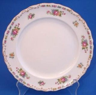 EPIAG China Dinner Luncheon Plate Roses Dinnerware