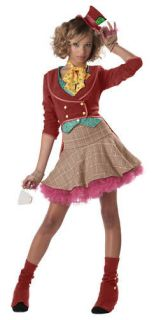 Halloween Adult Delightfully Mad Hatter Alice in Wonderland Costume