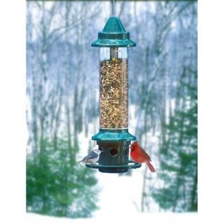 bird feeders in Seed Feeders