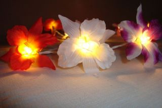 20 ORCHID FLOWERS FAIRY STRING LIGHTS 3M PARTY/DECORATION/WEDDING   3