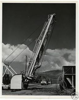 sugar cane loading 3 Hawaii Sugar Mill 1960s Photo8x10