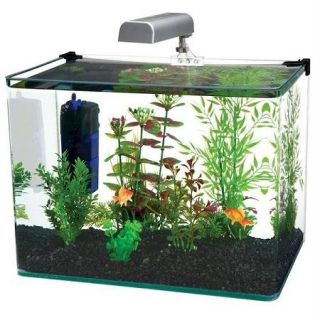 Features of Penn Plax Radius 10 Gallon Glass Aquarium Kit