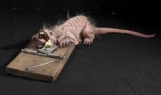 rat in trap animated prop halloween animatronic 4 ft watch