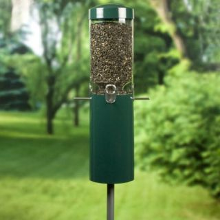Birds Choice Squirrel Proof Bird Feeder with Built in Squirrel Baffle