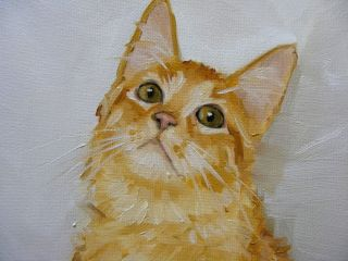 Original Oil painting   portrait of a ginger cat by j payne   turkish