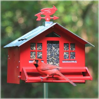 Perky Pet Squirrel Be Gone II Country Style Bird Ffeder Squirrel Proof