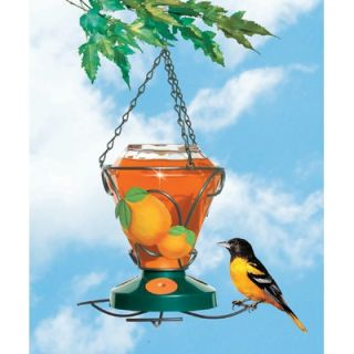 Perky Pet Glass Oriole Feeder   24 oz.