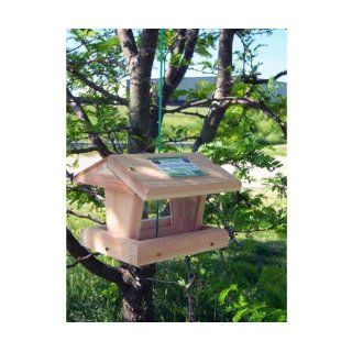 Mini Hopper Bird Feeder   hold both Sunflower and Seed