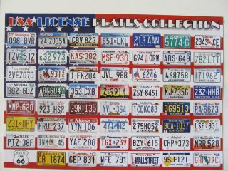 USA License Plate Poster All 50 States