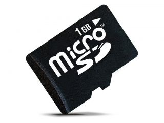 10 1GB Micro SD SDHC Mobile Phone Memory Card for Cell Phones