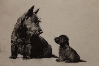 Original 1930 *Morgan Dennis* Scottish Terrier Scotty Dog & Puppie