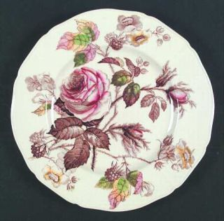 Alfred Meakin Rosalie Dinner Plate, Fine China Dinnerware   Brown/Multicolor Flo
