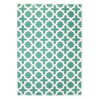 Threshold Indoor/Outdoor Area Rug   Turquoise (4x6)